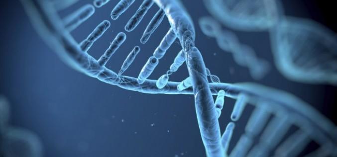 Великобритания узакони изкуствено оплождане с ДНК от трима родители