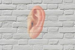 Науката чува или 3D изкуствени тъпънчета