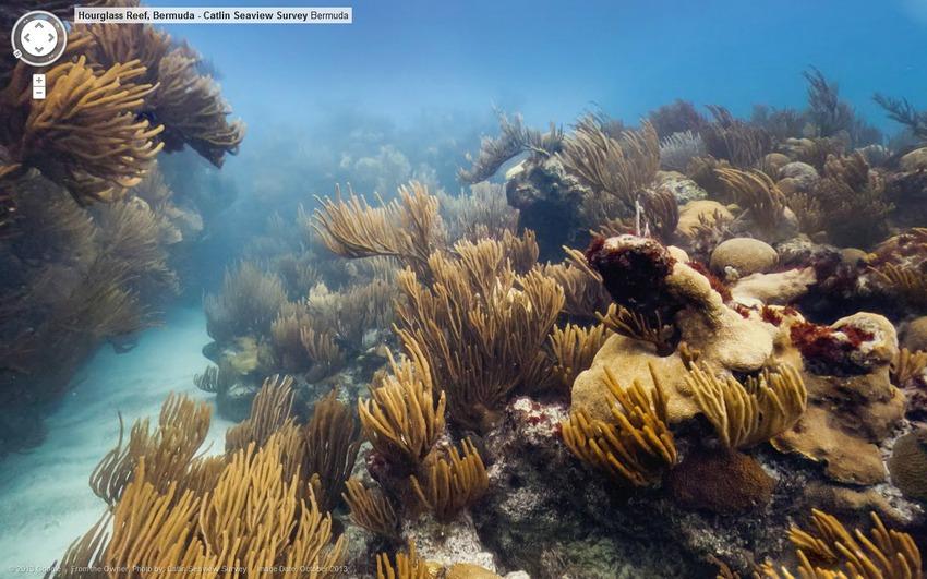 Coral%20Reef