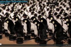 Стотици плюшени пингвини отразяват всяко движение на тялото
