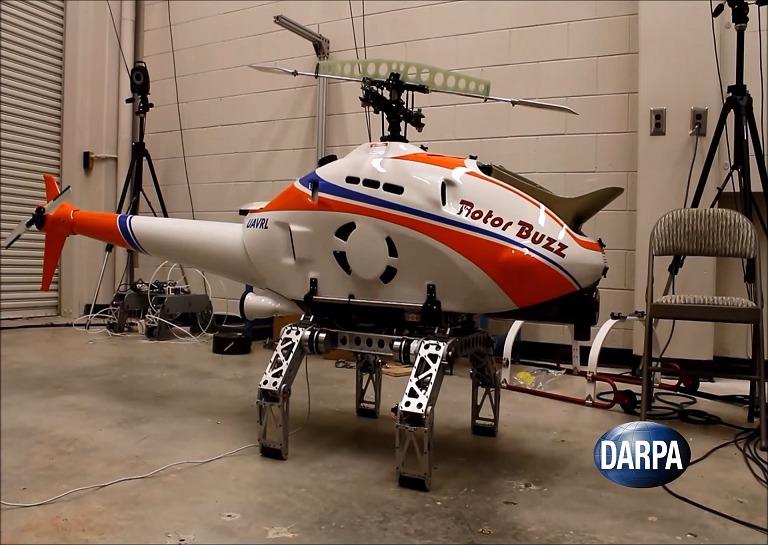 Darpha-1