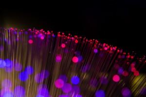 dark fiber 1