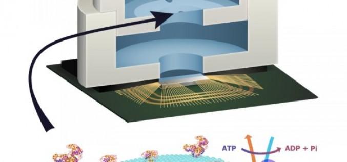 Нов вид електроника на хоризонта