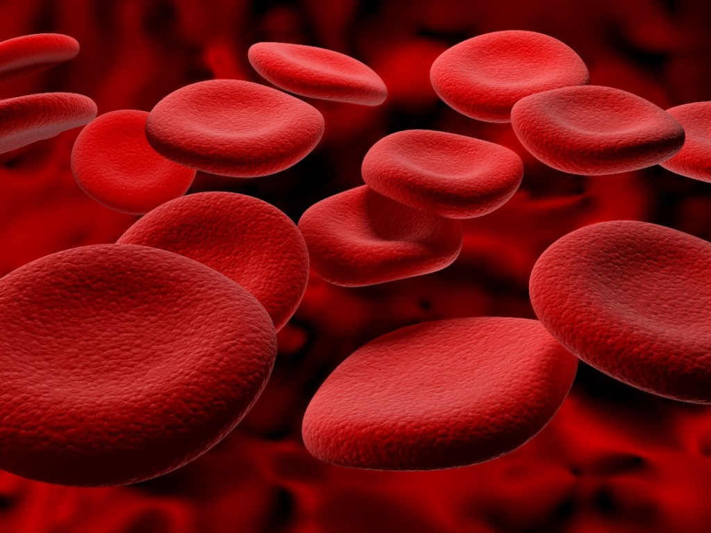 blood_cells_RBCs