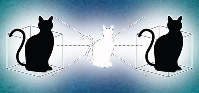 Физиците откриха втората котка на Шрьодингер (или не)