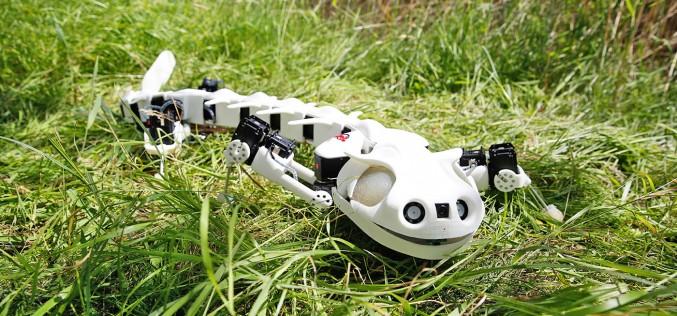 Плевробот – робот, ловък като амфибия