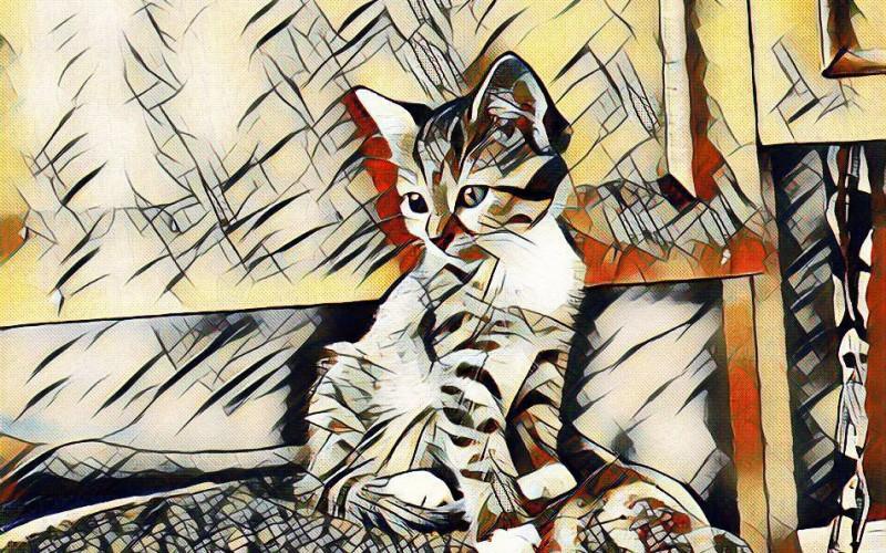 Мобилното приложение Lucid позволява всяка наша снимка да бъде променена в стила на Ван Гог, Пикасо или други знаменити майстори
