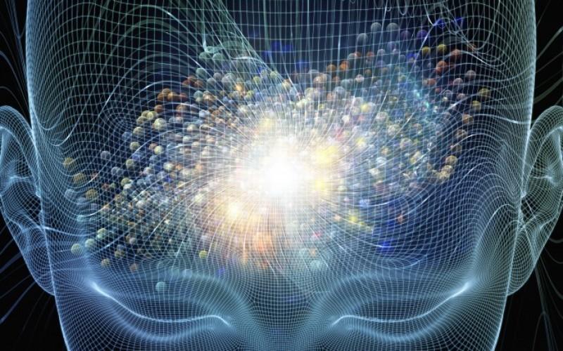 Разкриха подробности за обработката на информация в мозъка ни