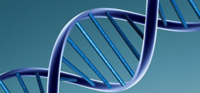 ДНК може да съхранява всички данни на света в една стая