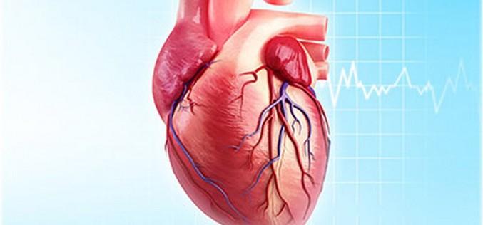 Електрически гени ще оправят разбити сърца