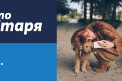 Теленор предлага до 200 лв. отстъпка за избрани устройства